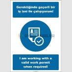 EF2521 - Türkçe İngilizce Gerektiğinde Geçerli Bir İş İzni İle Çalışıyorum