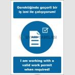 EF2537 - Türkçe İngilizce Gerektiğinde Geçerli Bir İş İzni İle Çalışıyorum