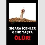 AT 1067 - Sigara İçenler Genç Yaşta Ölür