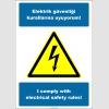 EF2524 - Türkçe İngilizce Elektrik Güvenliği Kurallarına Uyuyorum